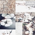 Wachstuch Baumwolle Cotton II