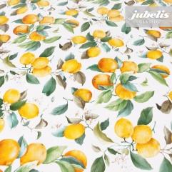 Wachstuch Zitrusfrüchte weiß I 100 cm x 140 cm