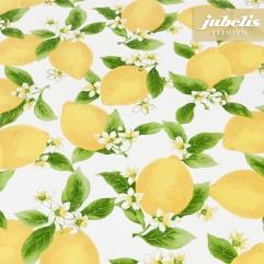 Beschichtete Baumwolle abwaschbar Citrus III