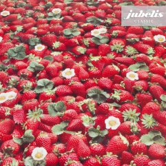 Wachstuch Erdbeeren I