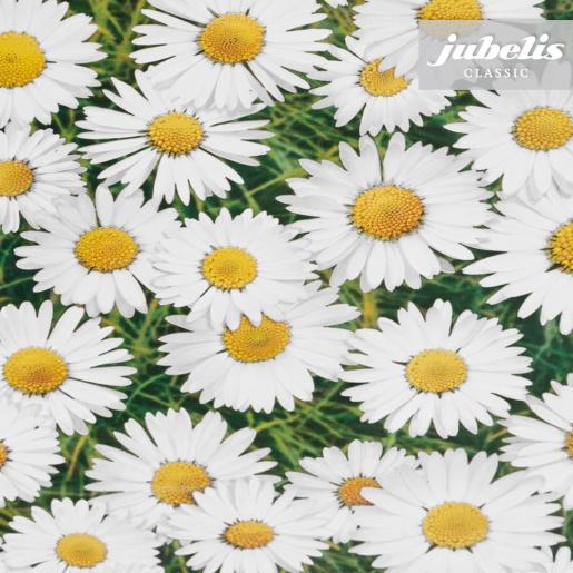 Wachstuch Gänseblümchen II 240 cm x 140 cm für Biertische (auf Wunsch geteilt = 2 Decken)